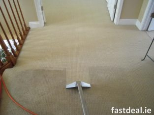 Carpet Cleaning Ranelagh