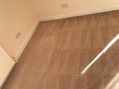 We'll Clean Your Carpets So That You Won't Have To