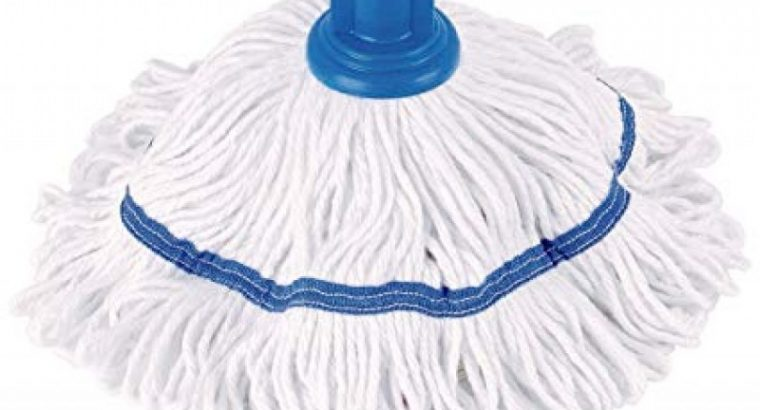 Robert Scott Hygiemix T1 Socket Mop Review