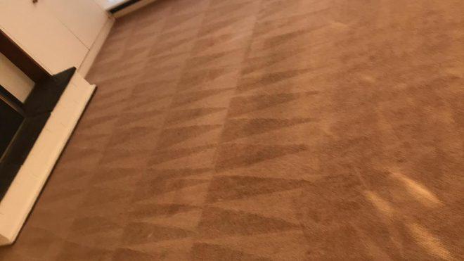 Carpet Cleaning Dublin – Eco Carpet Cleaners Dublin